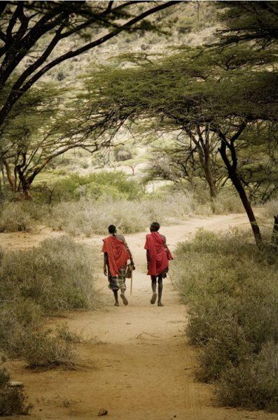 Artwork   Samburu Warriors, Limited edition 11-100 by Bob Nelson